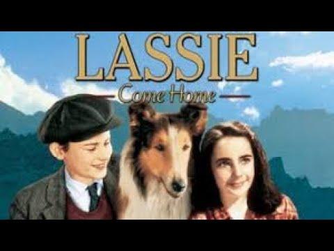 Lassie Come Home | Lassie se vraća kući 1943 SA PRIJEVODOM