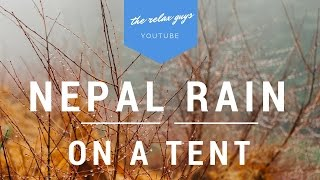 """Imagine camping in the natural forests of Nepal. Rain drops are falling on top of your tent. You are far from the crowd of the city and the noise. Here is a great place to relax and sleep. You will feel like you are in the forests of Nepal. Everyone has good fun and good sleep. ● Drops Of Nepal Rain Falling On The Tent - Rain On A Tent 1Hr -  No Loop Relaxation and Sleep ☔ 56● Leave a LIKE, Comment & Subscribe!  ● Join us on Youtube for weekly update: https://goo.gl/Hry5Ut● 1 Hour Relaxing Waterfall with Peaceful Bird Sounds  Nature Sounds Series 🌊 49: https://goo.gl/H6KQhQThe Relax Guys on Social Media:● Facebook: https://www.facebook.com/therelaxguys/● Twitter: https://twitter.com/TheRelaxGuys● Instagram: https://www.instagram.com/therelaxguys/● VK: https://vk.com/therelaxguys● Youtube: https://www.youtube.com/therelaxguyzThank you for the sounds of the natural environment:https://www.freesound.org/people/tenbensons-------------------------------------------------------------------------------------Night In The Nature  Nature Sounds Crickets, Owls and Dogs  Studying, Concentration and Focus : https://goo.gl/s4Ev5C1 Hour Singing Nightingales  Real Time Bursting Nightingales  No Loop  Nature Sounds : https://goo.gl/xrtrOpNatural Village Life Ambient Sounds  Peaceful Bird Sounds and Natural Cow Sounds : https://goo.gl/jokDCB1 Hour Relaxing Waterfall with Peaceful Bird Sounds  Nature Sounds Series : https://goo.gl/9St96I4 Hours of Gentle Ocean Waves - Relaxing Sea Video - Relaxing Video of Beach : https://goo.gl/GKfnCv-------------------------------------------------------------------------------------------Nature Sounds Playlist: https://goo.gl/3VsfJFSad Instrumental Music Playlist: https://goo.gl/R631AkMeditation Music Nature Sounds Birds Playlist: https://goo.gl/4C1luJ-~-~~-~~~-~~-~-Please watch: """"1 Hour Crackling Logs for Christmas - Fireplace - Full HD -  Fireplace With Classical Music 🔥 59"""" https://www.youtube.com/watch?v=jzGM25dAmEU-~-~~-~~~-~~-~-"""