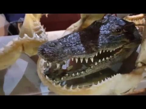 Ночной Рынок Джомтьен 2018 Паттайя. Nighт Маrкет Jомтiеn - DomaVideo.Ru