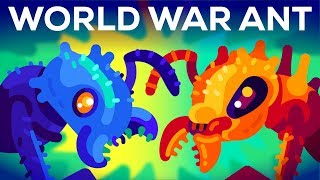 The World War of the Ants – The Army Ant