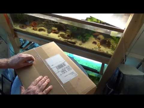 Kens Fish Frozen Food Delivery