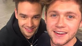 Niall Horan & Liam Payne Have Small One Direction REUNION Video