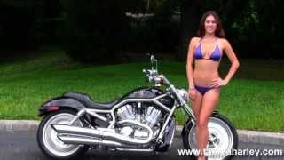 1. Used 2004 Harley Davidson VRSC V-Rod - Motorcycle for Sale