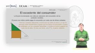 Microeconomía I - La Teoría De La Demanda (11) - Alfonso Rosa García