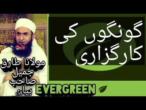 Video GONGON KI KARGUZARI MOLANA TARIQ JAMEEL BAYAN YOUTUBE download in MP3, 3GP, MP4, WEBM, AVI, FLV January 2017
