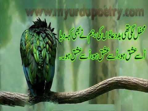 urdu poetry - Latest and best collection of urdu poetry,A beautiful collection of urdu poetry shayari about ishq .for more urdu poetry,ghazal shayari ,latest SMS ,design s...