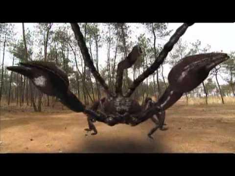 Monkey King vs Scorpion Demon- 2010.