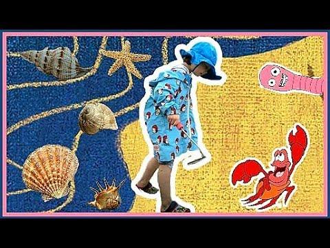 Семейные развлечения в Корее Охота на моллюсков ;)