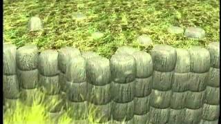 澎湖大東山水族館-1