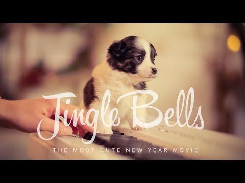 Jingle Bells українською (New Year 2018) – Шпилясті кобзарі (Ukraine)
