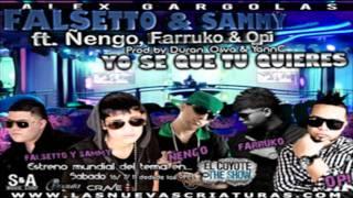 Yo Se Que Tu Quieres (Remix) - Falsetto & Sammy Ft Ñengo, Farruko & Opi ★HoyMusic.Com★