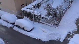Neve e maltempo in Molise situazione 18 gennaio 2016 a Campobasso