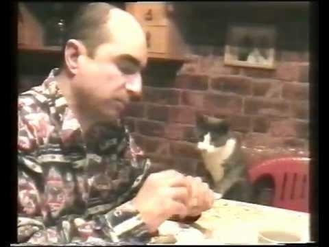 「聰明貓」懂得打手語,告訴主人想吃點心