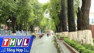 Thăm lại Trà Vinh - Thành phố xanh