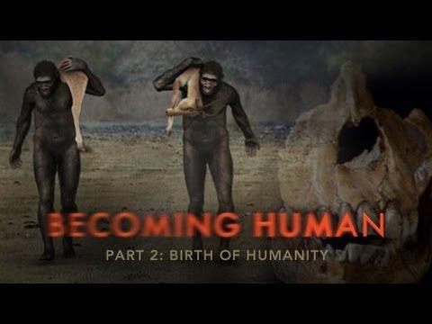 انسان شدن - قسمت دوم - تکامل انسان