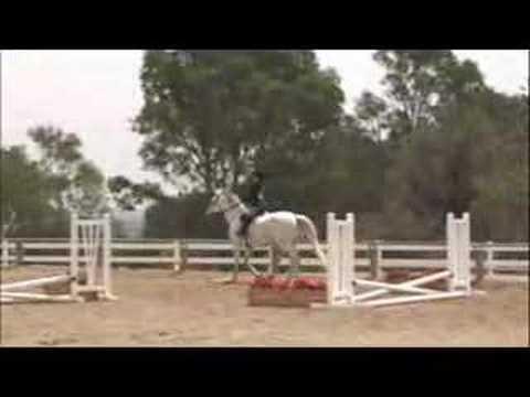 Palos Verdes Horse Tourney