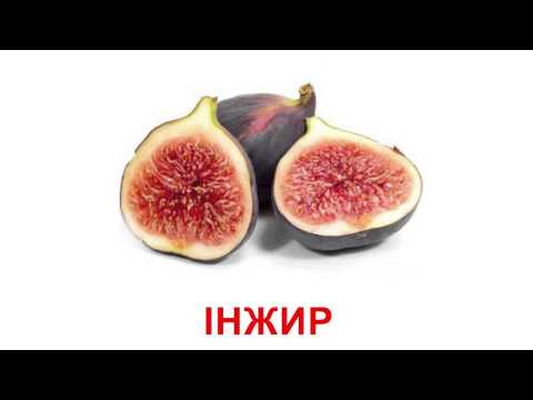 Video of Ukrainian flashcards - Fruits