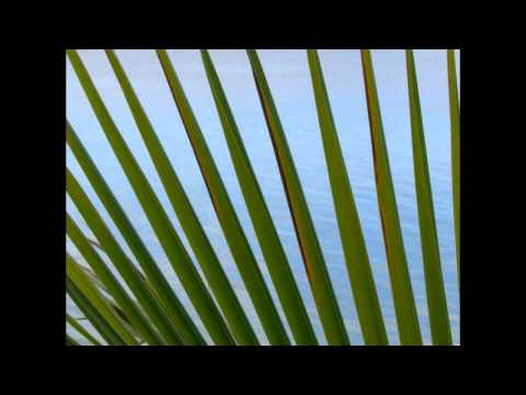 Jamaican Sunset - Danny Davis & The Nashvlle Brass.avi