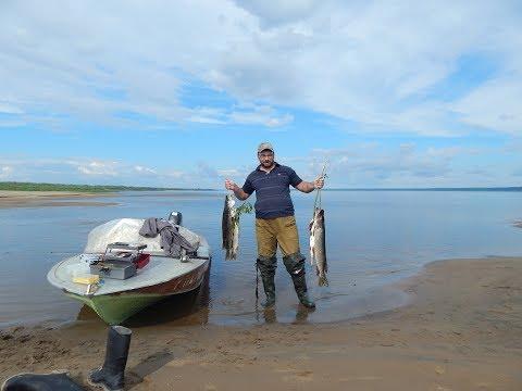 на рыбалке на оби ноты