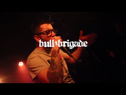 Mister X, Bull Brigade (AKC Medika/Attack 19.3.2016.)