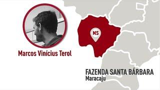 MS - Maracajú - Marcos Vinícius Terol