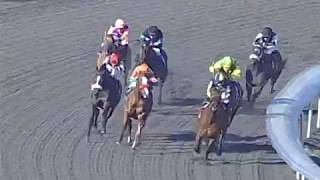 HnR 's Kindle wins ALO Hollywood Park Mike Smith Up