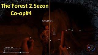 7ffn-LhHIx4