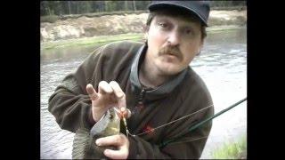 Серебряный ручей карелия край рыболовной мечты