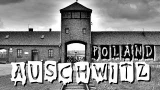 Polonia - Auschwitz