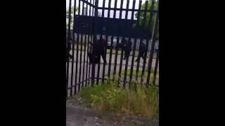 Video Irish Travellers vs Bailiffs, riot! MP3, 3GP, MP4, WEBM, AVI, FLV Agustus 2018
