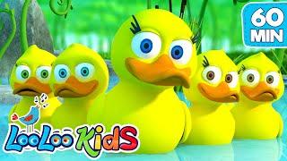 Video Five Little Ducks - Great Songs for Children | LooLoo Kids MP3, 3GP, MP4, WEBM, AVI, FLV Juli 2019