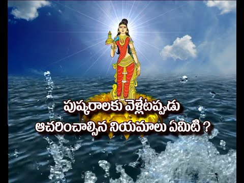 Video Rules and Regulations To Follow While Going on  Pushkar? || Dharma Sandehalu || Bhakthi TV download in MP3, 3GP, MP4, WEBM, AVI, FLV January 2017