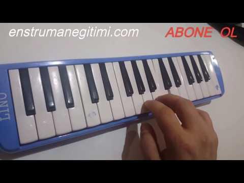 Melodika Öğreniyorum--Erkin Koray - Öyle Bir Geçer Zaman ki (видео)