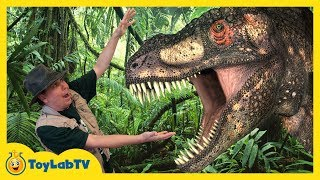 Video Giant Life Size Dinosaur & Raptor Chase at Discover the Dinosaurs Jurassic Event for Kids MP3, 3GP, MP4, WEBM, AVI, FLV Juni 2018