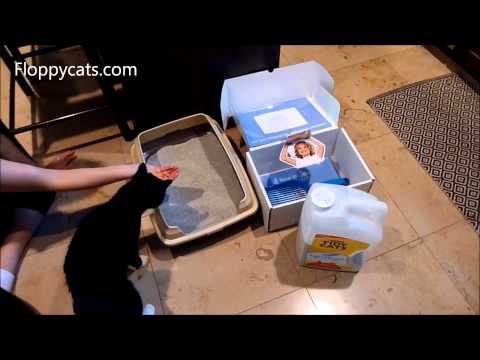 0 Tidy Cats Lightweight Litter Review