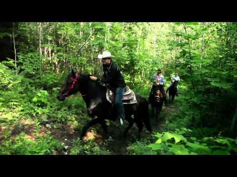 Captiva Farms Horseback Riding Ottawa in the Beautiful Gatineau Hills