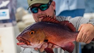 The GEOBASS around-the-world epic bass fishing adventure travels far to the crystal blue waters of Christmas Island in the Pacific Ocean in this episode. Thi...