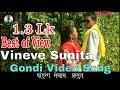Vineve Sunita vineve || Adiwasi Gondi Video Song HD || Pandurang Meshram Present