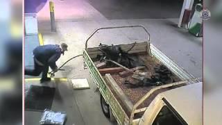 Ограбление по–австралийски