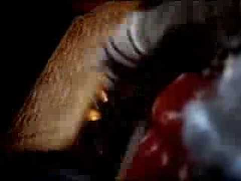videos chistosos – commercial – budweiser – farting horse (t