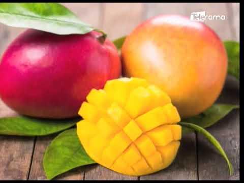Mango: La fruta de temporada