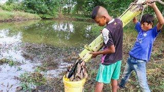 Video Unique Fish Trapping - Smart Boys Make Fish Trap Using Banana Tree   New Technique Of Catching Fish MP3, 3GP, MP4, WEBM, AVI, FLV April 2019
