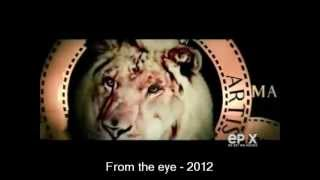 2nd Annual Logo Histories : MGM History (1916-2012)