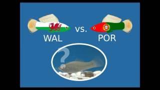 Wales schlägt Portugal im Halbfinale