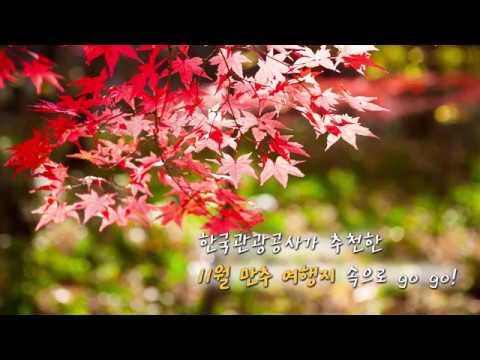 강남구청 카드뉴스 - 만추여행지
