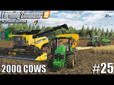 First Harvest of the Big Field | 2000 Cows Farm | Farming Simulator 19 | #25