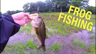 """My Frogging Rod -- http://bit.ly/2pzfS2i (7' 4"""" Heavy casting)Song... n e u r o t i k -- the viewRigged Hat -- http://bit.ly/2mqaOXzTackle...Line -- http://amzn.to/2sRgOwBLure -- http://amzn.to/2tftSLiCraw -- http://amzn.to/2ve5gEhSo of course, this video was filmed and uploaded after my England endeavors with Carl and Alex. This was a quick vid I filmed from my stay in Boston. My friend Colton and woke up at dawn, jumped on some bikes, and peddled to a unique little golf course pond where he had scouted out a some chunky NE largemouth. Hope you guys enjoyed this kick back vid and are still digging the UK vlogs. Keep fishing!!--Young PluggWhat I film with…Drone — http://amzn.to/28SzZjwCamera — http://amzn.to/28WQz2yLens — http://amzn.to/28YGMYeGoPro — http://amzn.to/28SGyRFBIG SHINY Camera -- http://amzn.to/2dqwEZbBIG SHINY Lens -- http://amzn.to/2dqwxNtMy Other Gear...Computer — http://amzn.to/295J31nEditing software — http://amzn.to/28SzPIWMic — http://amzn.to/28R3QWTCamera Case — http://amzn.to/28SzO7PBackpack -- http://amzn.to/2dHgZaZFollow me on…SOUNDCLOUD -- http://bit.ly/2l4fqpDINSTAGRAM -- http://bit.ly/2l8ma5uTWITTER -- http://bit.ly/2lFa0iqSNAPCHAT: fishingthemwFACEBOOK -- http://bit.ly/2kHM8fx #ftmw*The above links are Amazon Associate links*"""