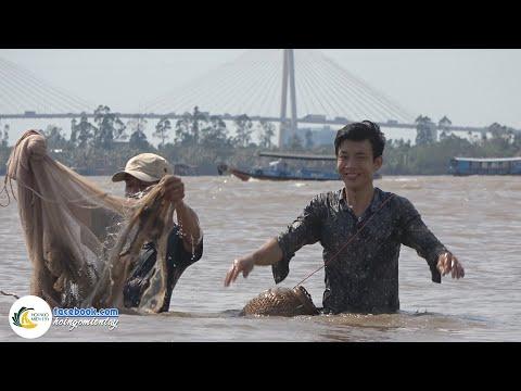 Ra Sông MÊ KÔNG Kéo Chài Bắt CÁ LÓC   Hội Ngộ Miền Tây - Tập 90 - Thời lượng: 35 phút.