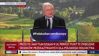 """Prezes chce kupić głosy wsi: """"100 zł od jednego tucznika i 500 zł od jednej krowy"""""""