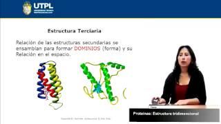 UTPL PROTEÍNAS ESTRUCTURA TRIDIMENSIONAL [(GESTIÓN AMBIENTAL)(BIOQUÍMICA)]
